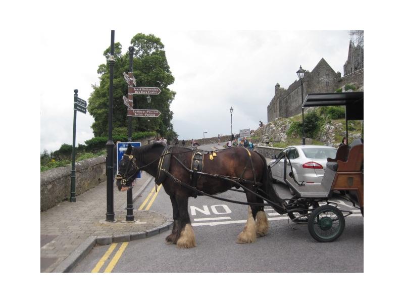 Chauffeur Services Ireland