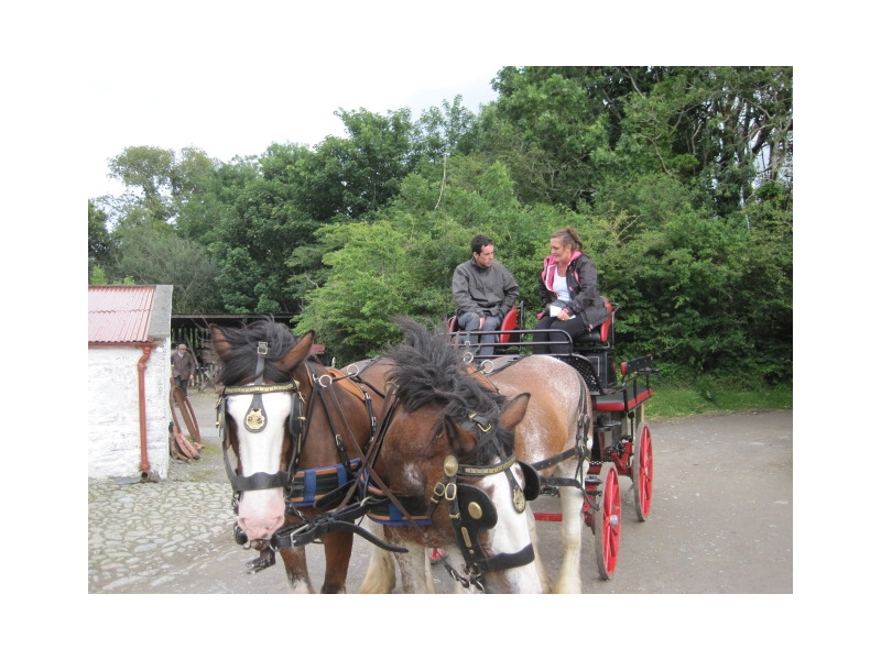 Chauffeur Services Ring of Kerry