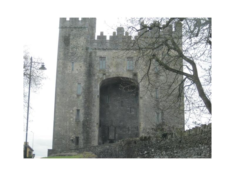 Chauffeur Tour Bunratty Castle