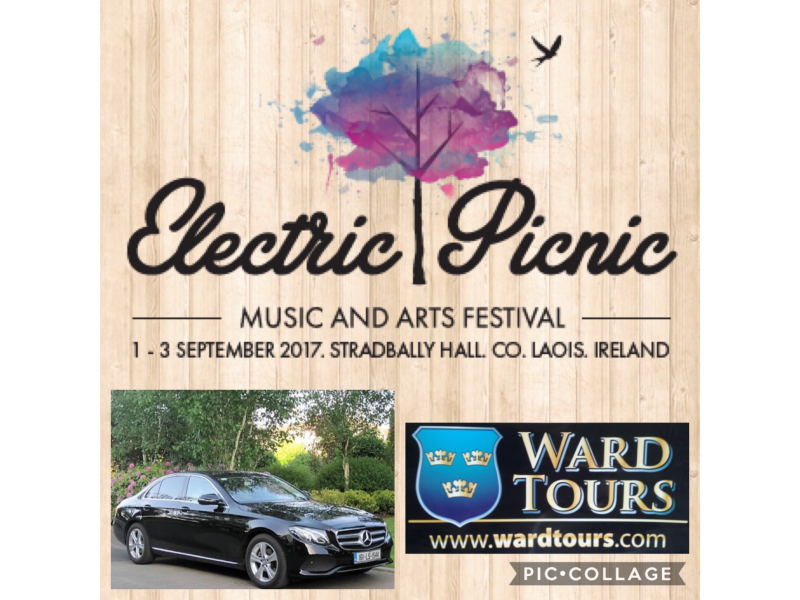 electric-picnic-1