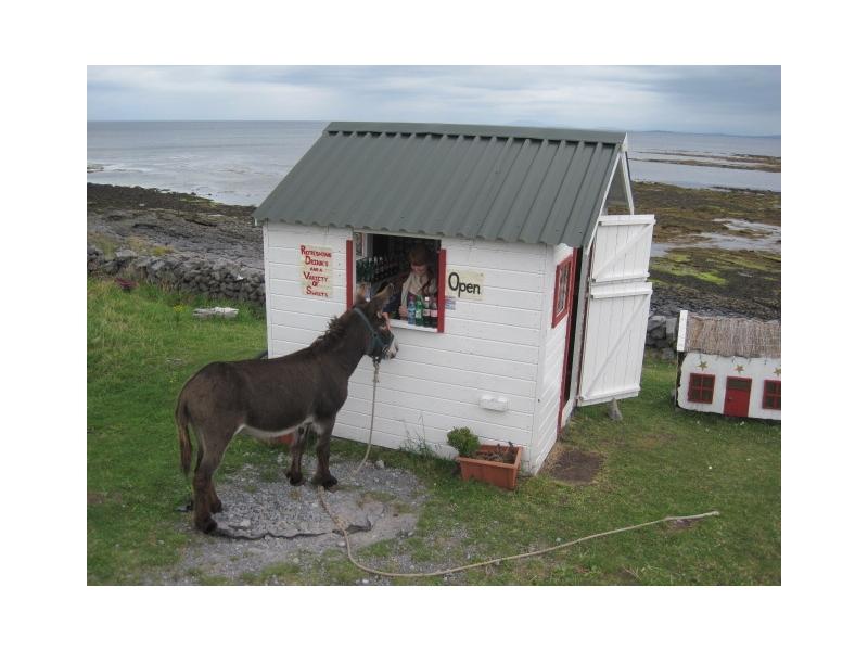 private-driver-tours-ireland