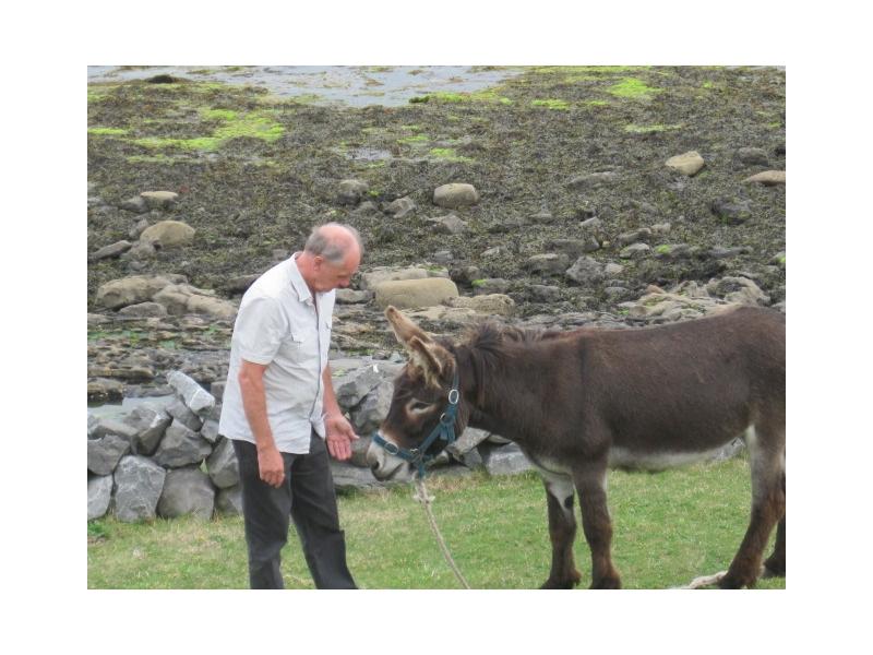private-tours-ireland-1